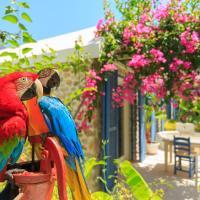Flamingo Hotel & Spa