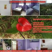Anthurium Apartment