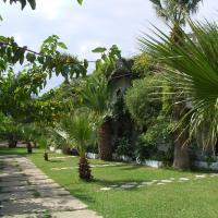 Damnoni Paradise