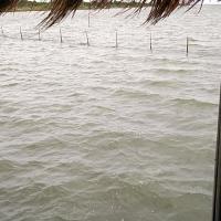 Keta Lagoon Resort