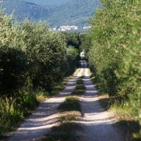 Borgo Iris