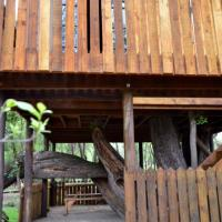 Willow Nest Treehouse Riversands