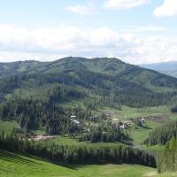 Medvezhiya Gora