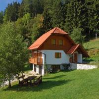 Apartments Turicnik