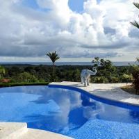 Luxury Villa Estates