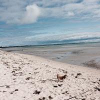 Beach Lovers Retreat