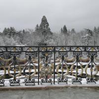 El Jardín del Magnolio