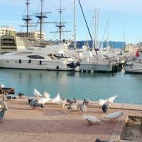 Gomyhome Alicante