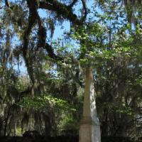 Savannah Liberty