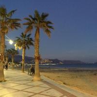 Fin Albir Playa