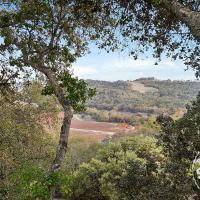 Vineyard View at Halter Ranch 9420