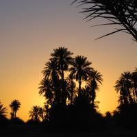 Kasbah Les Alizes Du Desert