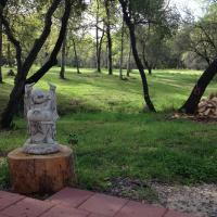 Zen Dog Retreat