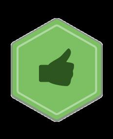 Статус: Чемпион полезных отзывов 1 уровня
