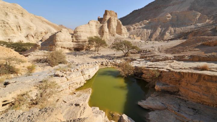 Encuentra el mejor lugar para las actividades al aire libre en Neve Zohar
