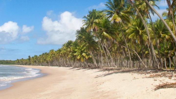 Encuentra el mejor lugar para navegar en barco en Isla de Boipeba
