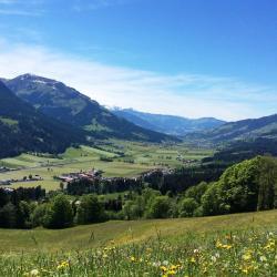 Brixen im Thale 125 hotels