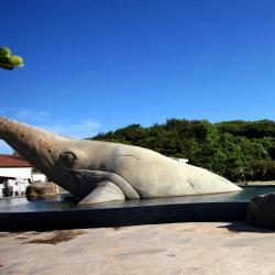 Rio das Ostras 219 hoteles