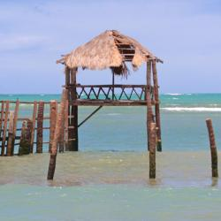 Costa do Sauípe 16 hotéis
