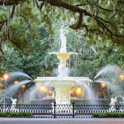 Savannah 570 hoteles