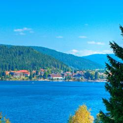 Titisee-Neustadt 86 hotels