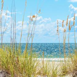 Butler Beach 90 hotels