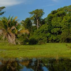 Rondonópolis 20 hoteli