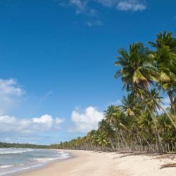 Ilha de Boipeba 105 hotéis