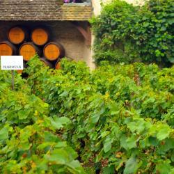 Chorey-lès-Beaune 3 hôtels