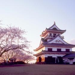 Tateyama 22 hotel
