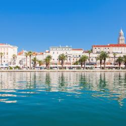 Split 1048 pet-friendly hotels
