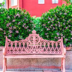 Nogales 7 hotels