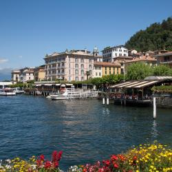 Bellagio 147 pet-friendly hotels