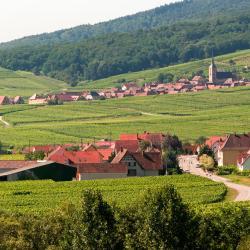Steinbourg 2 hotels