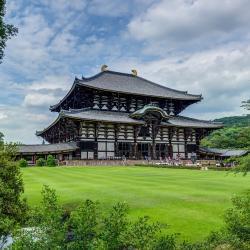 Nara 138 hoteles