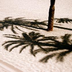 Коста-дель-Силенцио 370 отелей