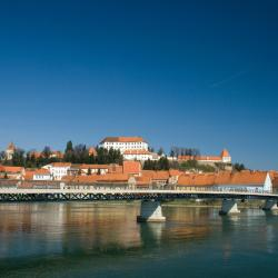 Ptuj 5 vacation homes