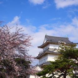 Odawara 20 hotel