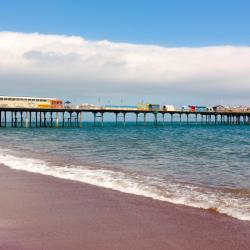 Teignmouth 11 pet-friendly hotels