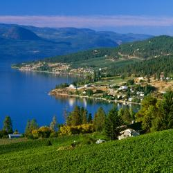 Kelowna 32 vacation homes