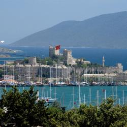 Bodrum City 56 pet-friendly hotels