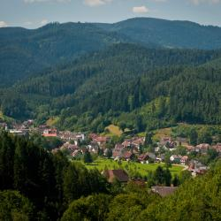 Furtwangen 19 hotels