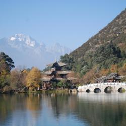 Lijiang 589 hotels