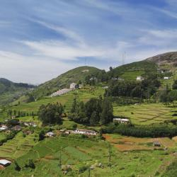Ooty 13 hotels accessibles