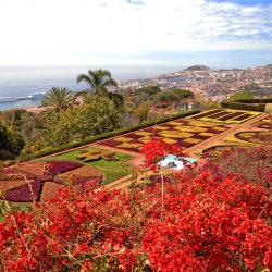 Funchal 1210 hôtels