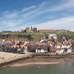 Whitby 510 hotels