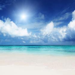 Punta Cana 902 hoteles