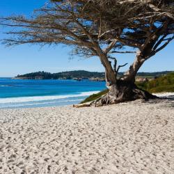 Carmel-by-the-Sea 12 basseiniga hotelli