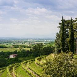 Capriva del Friuli 12 hotel