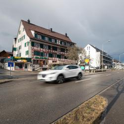 Wolfhausen 1 hotel
